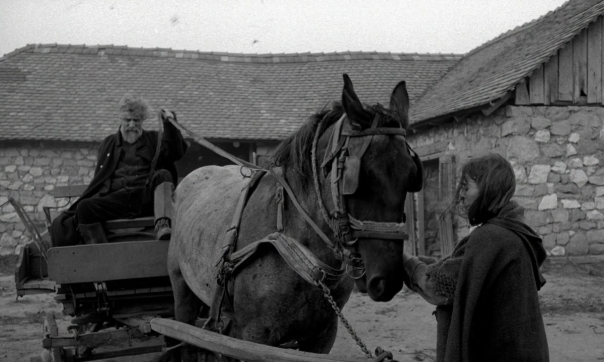 the turin horse 2